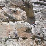 Sinks Canyon & Wild Iris