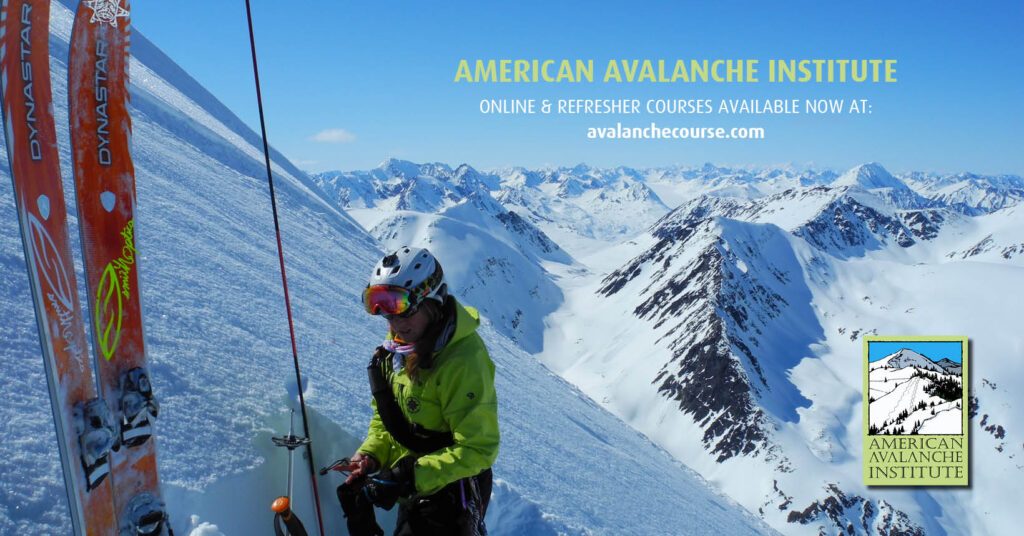 American Avalanche Institute Online Courses