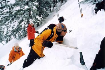 Avalanche Courses